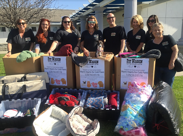 Pet Waggin' team collecting warm dog items for animal shelter