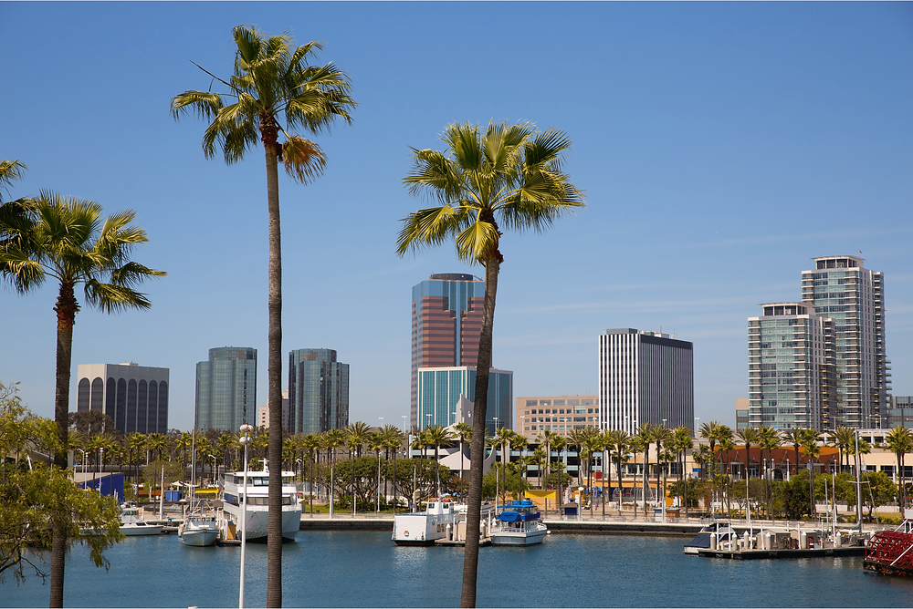 downtown long beach with dog friendly places