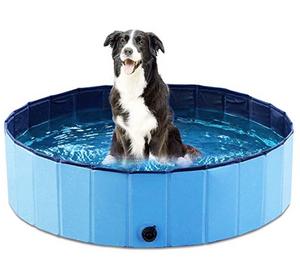 Dog Pool Long Beach Pet Care
