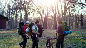 5 Tips For Hiking with your Dog
