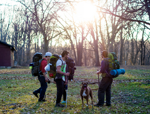 5 Tips For Hiking with your Dog   Pet Waggin' Pet Care