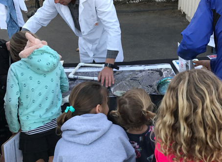Pacific Beach Elementary School Science Day