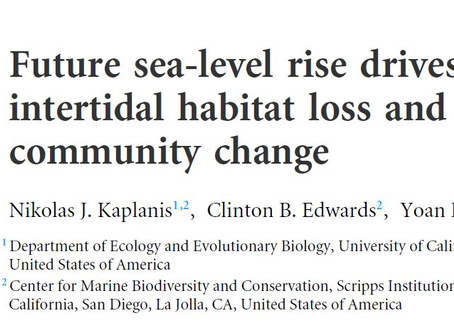 Rising Tides Project results published in PeerJ