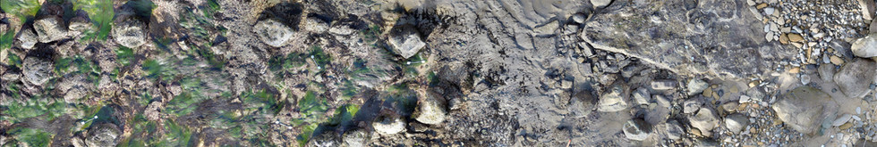 Cabrillo National Monument, Zone 2