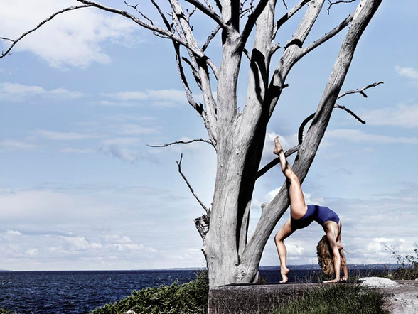 Book - Yoga
