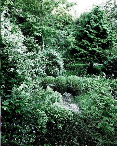 Garden in the North