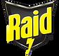 11_RAID.png