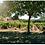 Thumbnail: Reserve du Château St Baillon, Côtes de Provence Rosé 2020
