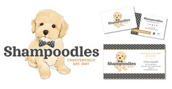 2014 Wix Website Portfolios_Shampoodles.