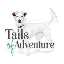 Tails of Adventure Logo Graphic Design