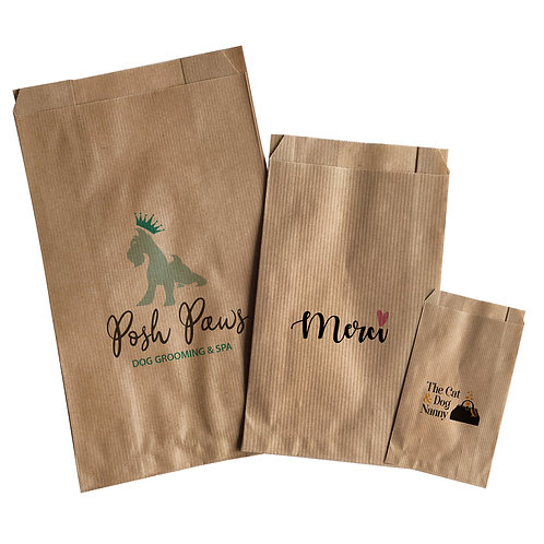 kraft paper bags (pack of 10)
