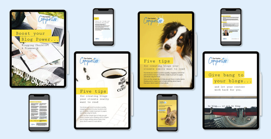 HofH GD Portfolio_WithColours_CanineCopy
