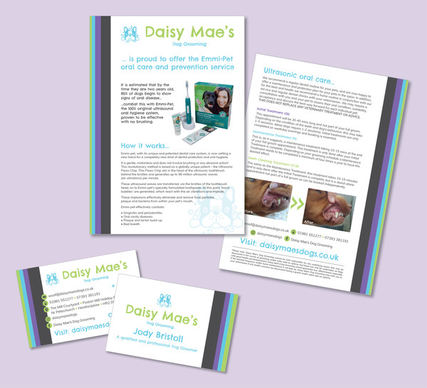 Daisy Mae's Dog Grooming Graphic Design