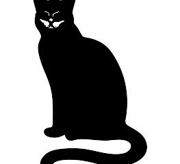 The Cat: Dele Mustache
