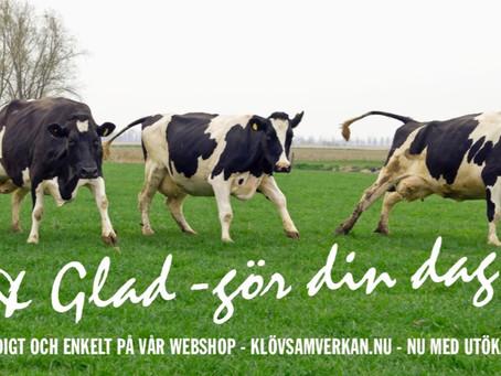 Ko & Glad – gör din dag!