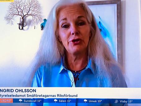 Mina 3 minuter i TV 4 nyhetsmorgon