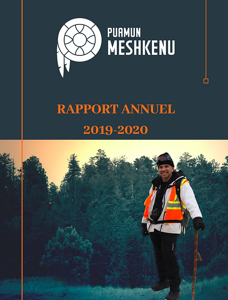 RAPPORT ANNUEL 2019-2020 FR