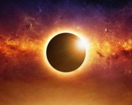 L'éclipse solaire et mon chien ? Compatibles ?