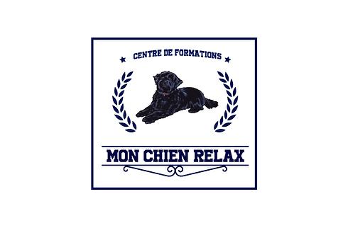 Logo Academie Finale.png