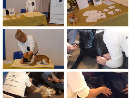 Nous étions sur le salon du bien-être canin de l'Oise !