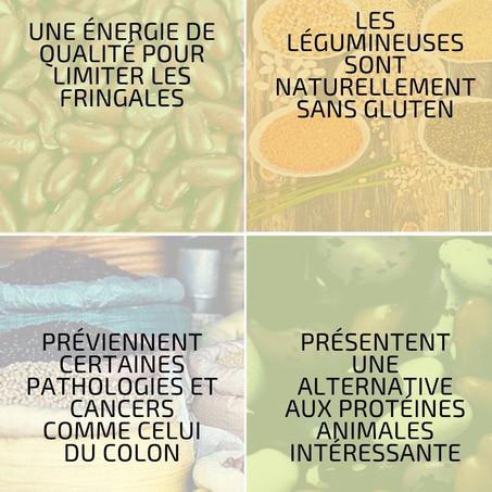 Les légumineuses ou légumes secs, des alliés santé incontournables !