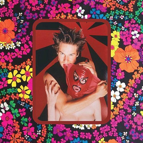 david duchovny - mask biter - vinyl sticker