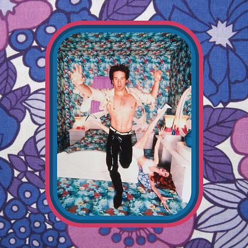 david duchovny - plastic pants - vinyl sticker