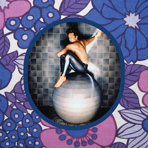 david duchovny - ball boy - vinyl sticker