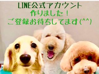 LINE公式アカウントができました(^ ^)