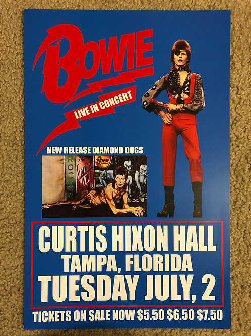 Bowie Curtis Hixon Hall Tampa (11x17)