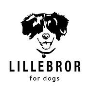 Lillebror_Logo.png