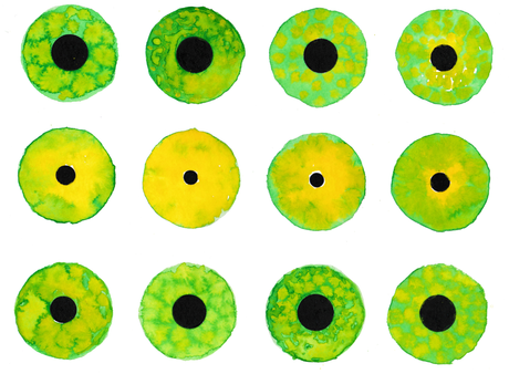 Reptile Eye Sprite Sheet