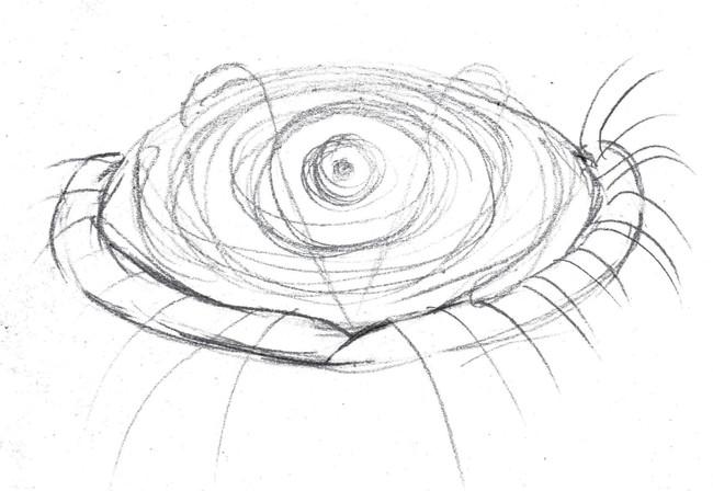 Hand eye sketch