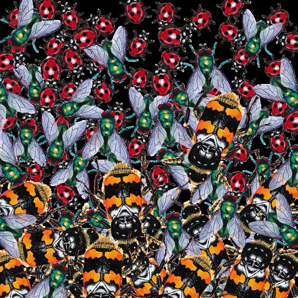 Bug Background