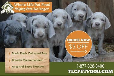 image_100_TLC-PET-FOOD_5-dollar-coupon.j