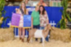 2018champ-goat.jpg