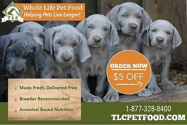 tlc-dog-food.jpg