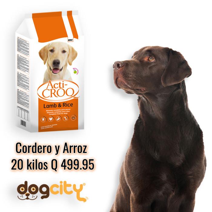 AC_Codero_Nuevo.jpg