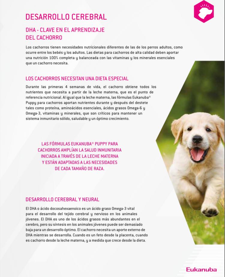Información sobre Eukanuba DHA, página 1
