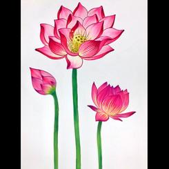 Lotuses, 2020