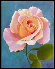 Rose, 2010