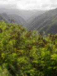 #32 Hawai'i, Kahakuloa Valley, Kahekili