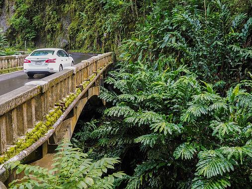 #6 Hana Highway, Hawai'i, Maui, USA.jpg