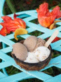 #7_Coconut_Glen's,_Hana_Highway,_Hawai'i