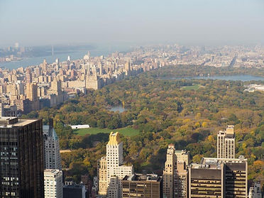 Central Park viewed from Top of the Rock