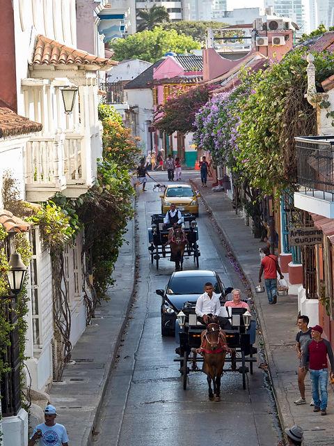 horse-drawn carriages, Juan Valdez coffee shop interior, Bocagrande, Cartagena, Colombia.jpg.jpg