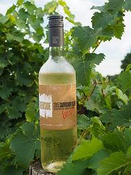 Creekside Estate Winery, Jordan, Ontario, Canada