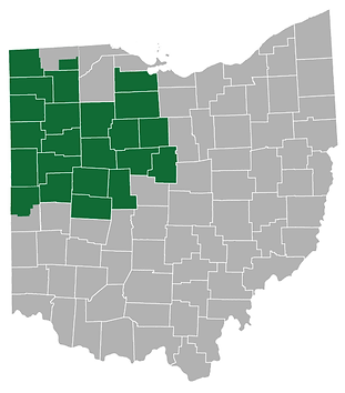 Ohio School Board District 1 Election