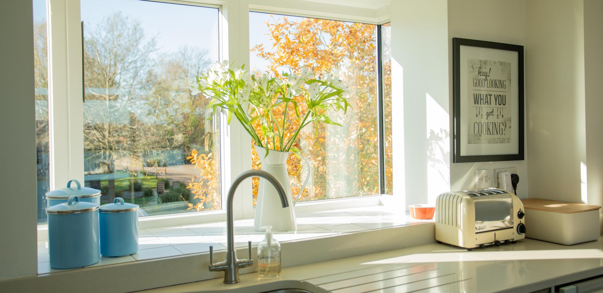Sandpipers kitchen window