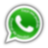 WhatsApp Logo PNG+Central-Vendas-DS.png